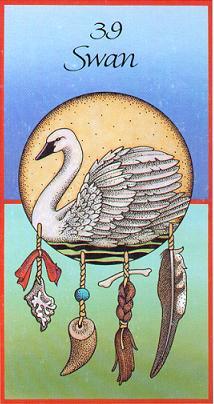 swancard