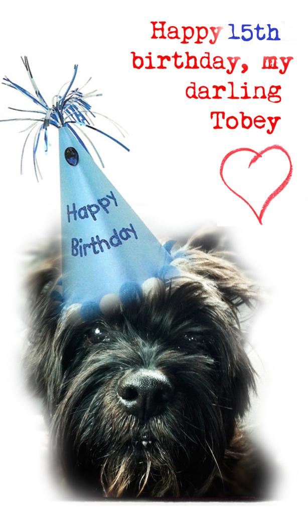 tobey1