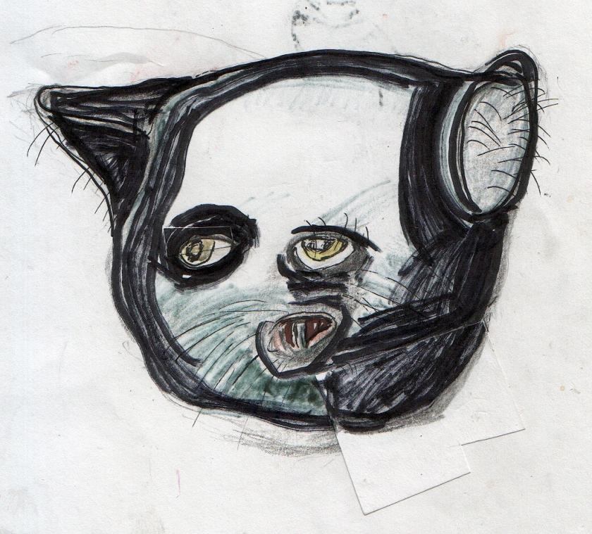 cat-nov-1b